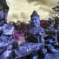 Growing Buddhas