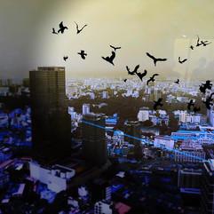 Birdmen in the sky