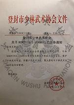 Evaluator of Shaolin Wushu Association Greece