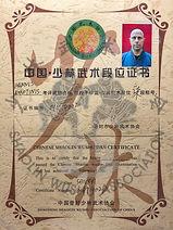 Shaolin Wushu Association Greece