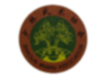 Shaolin Wushu Association.png