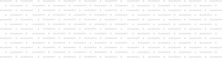 WILDHEARTS-2.png