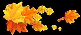 kisspng-color-banner-autumn-leaf-autumn-