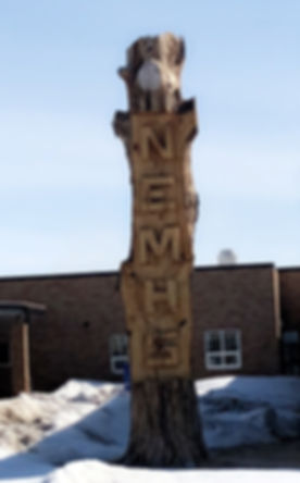 NEMHS wooden tree sign in Wolf Point.JPG