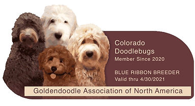 Goldendoodle Association of North Americ