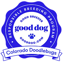 good dog logo.png