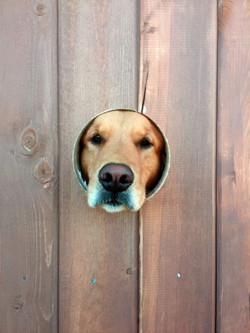 Peeking at you