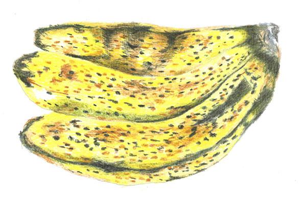 151バナナ