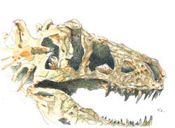 256恐竜