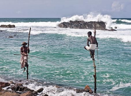 Sri Lanka, la Perla del Océano Índico
