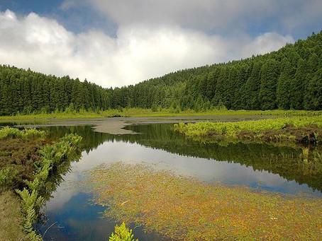Las Azores. Tranquilidad a tiro de piedra
