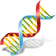 dna-icon-256.png