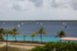 View_Regatta.jpg