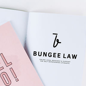Bungee Law logo
