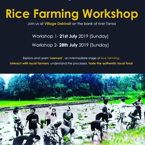 Community Rice Farming Workshop organized by unTAG.