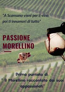"""Passione Morellino : """"A Scansano vieni per il vino poi ti innamori di tutto"""""""