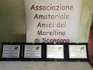 Premiazione d' eccellenza 2019 AAA Morellino