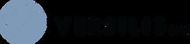 Logo_versilis_Blue.png