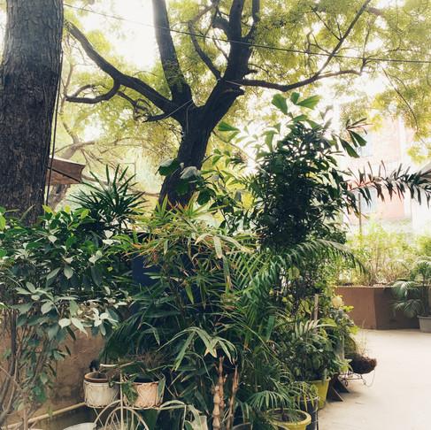 A new kind of Monday - New Delhi