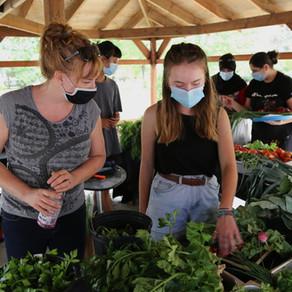 The powerful impact of urban gardening