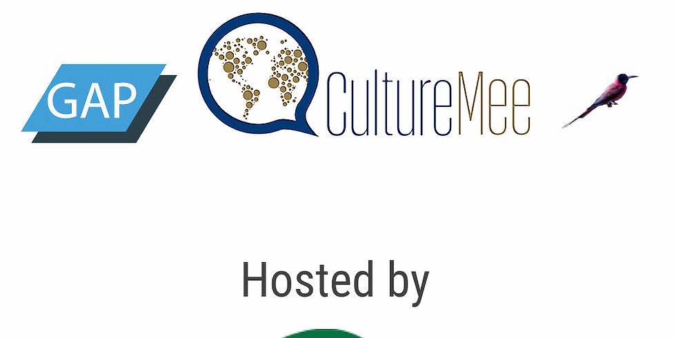 Understanding Culture and Technology