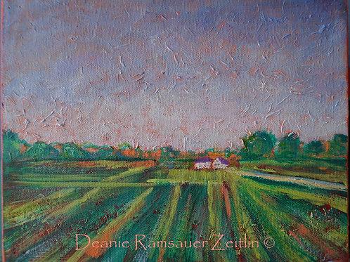 Farmers Field - Acrylics