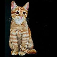 きゃわぁーー♡__猫の描き方レッスンで_生徒さんと一緒に描きました__プロコース