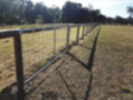 Rural fencing and gate Tamborine