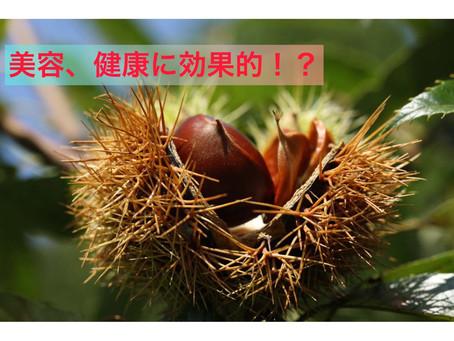 秋の味覚 栗には栄養がたくさん!?
