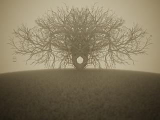 The Asymmetrical Tree
