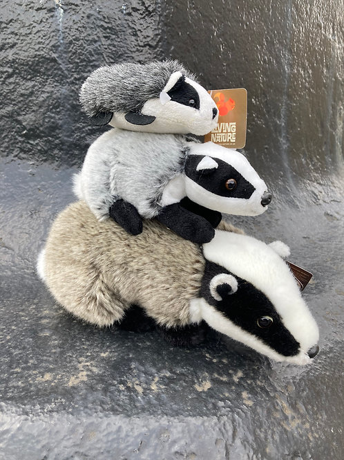 Badger clan family