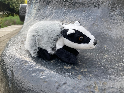 Premium soft toy teenager badger