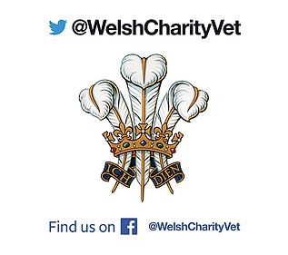 welsh charity vets.png