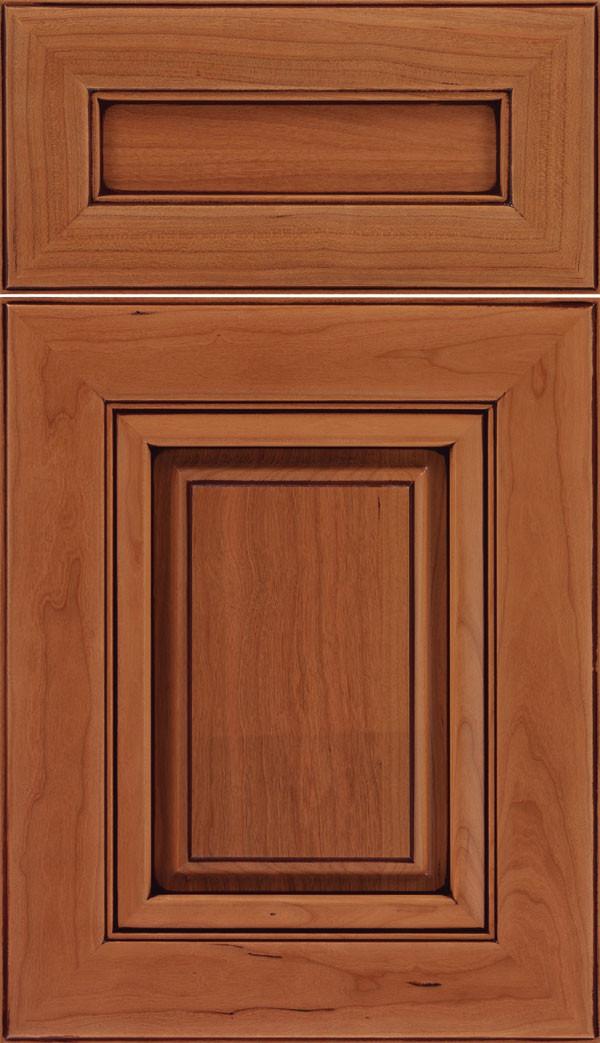 Paxson 5 piece Raised Panel Cabinet Door Ginger Mocha