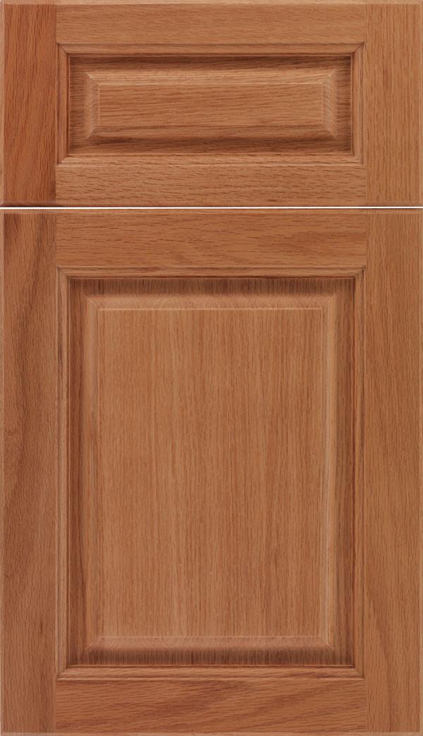 Marquis 5 piece Raised Panel Cabinet Doors Spice