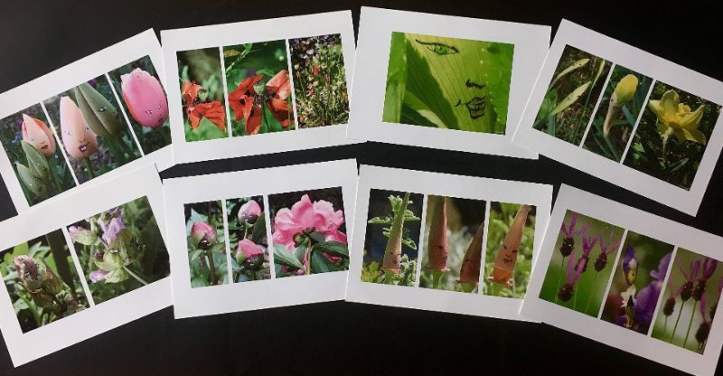8 cartes Le Jardin Enchanté