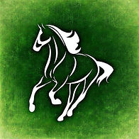 horse-966521_640.jpg