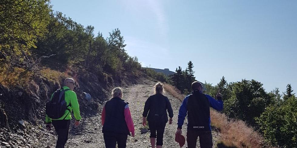 Vandring och yoga i Lofsdalsfjällen 2020 AVSLUTAD