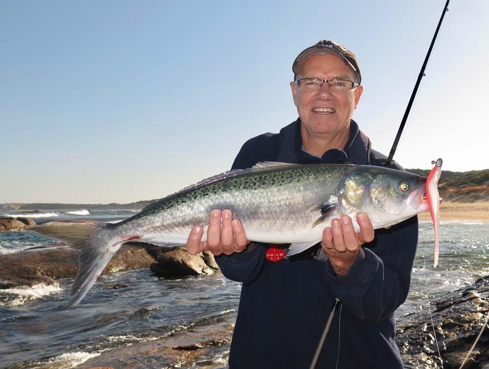 Catching Salmon on sof plastics in south-west WA