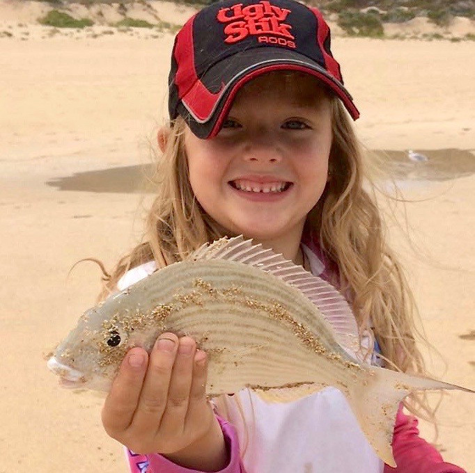 Tarwhine aka Silver Bream caught beah fishing in WA