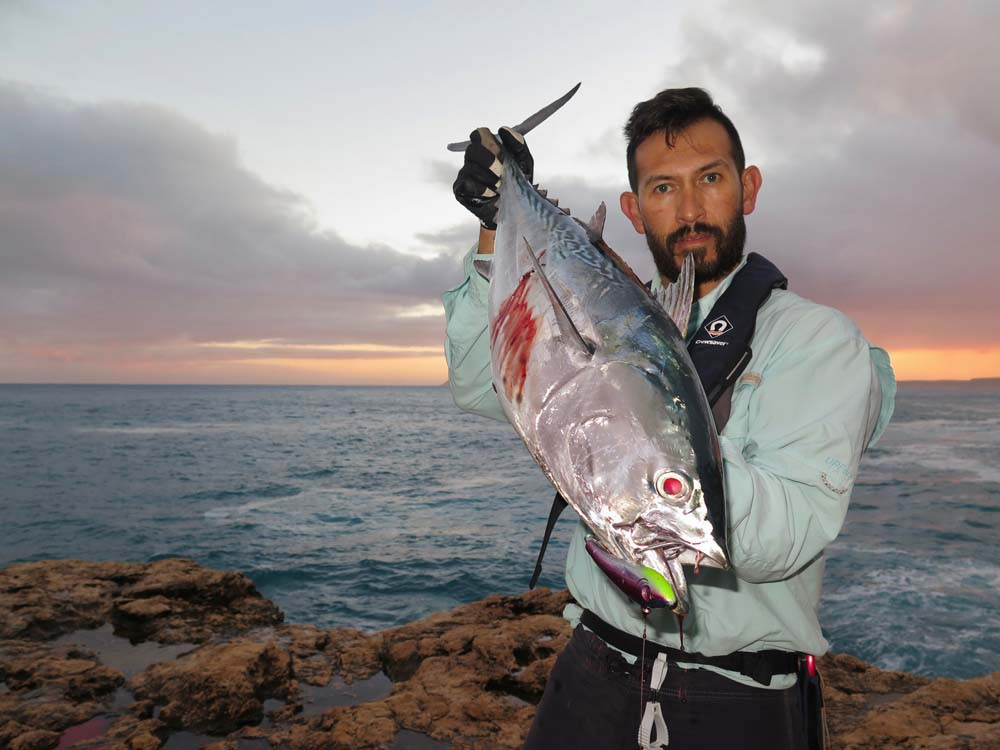 Mack Tuna caught off the rocks at Quobba Station WA