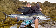 Landbased Sailfish _ NW LBG Safari _ Apr