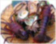 Lobster and Abalone tours Perth