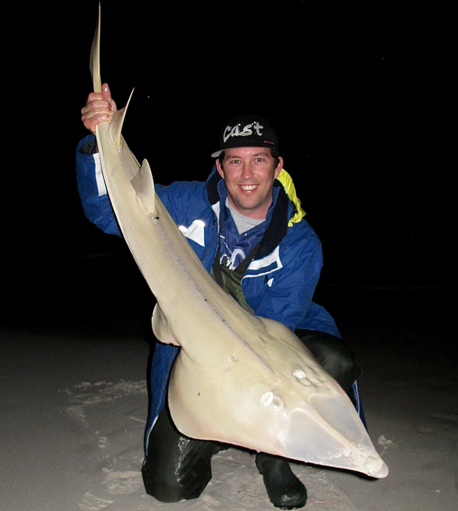 Shovelnose Ray caught beach fishing at Lancelin WA by Robbie Riches