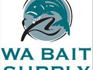 Guitarfish aka Shovelnose Shark Beach Fishing Wedge Island WA