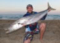 Big Spanish Mackerel Caught beach fishing in Perth Western Australia WA