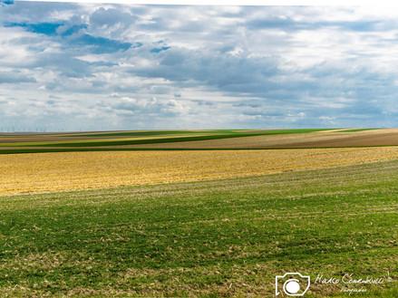 Francia-50.jpg