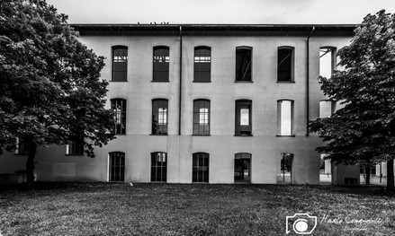 AuditoriumPaganini-RenzoPiano-2.jpg