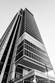 Grattacielo-SanPaolo-2.jpg