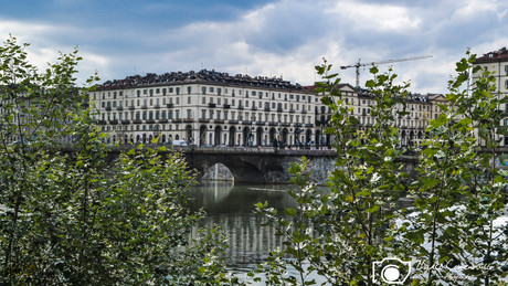 Torino-4.jpg